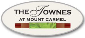 logo_townes_at_mount_caramel